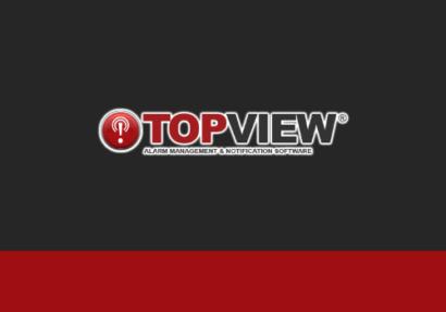 Top View logo